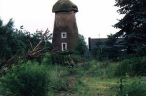 Garten 1991